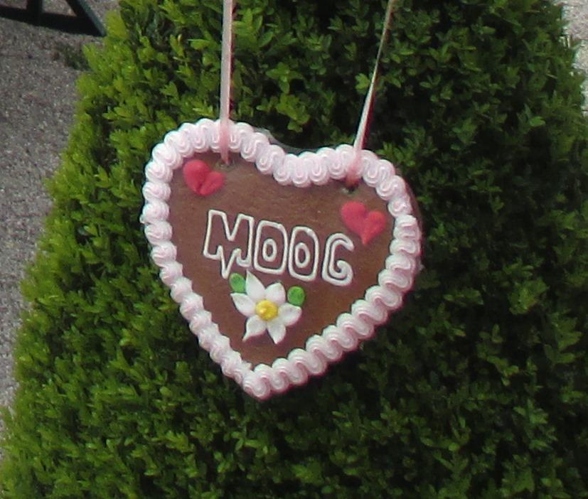 IMG_8689